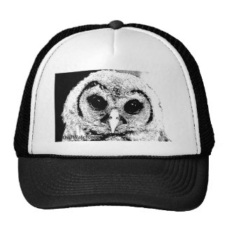 Boo 2014 B&W Mesh Hats