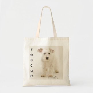Boo, shelter dog on canvas shopping bag