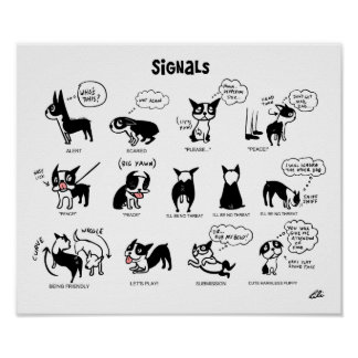 Boogie Signals by Lili Chin Poster