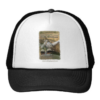 Book Cover Viking Helmet with Horns Mesh Hats