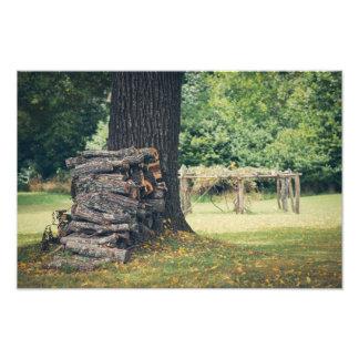 Booker T Washington Plantation Photo Print