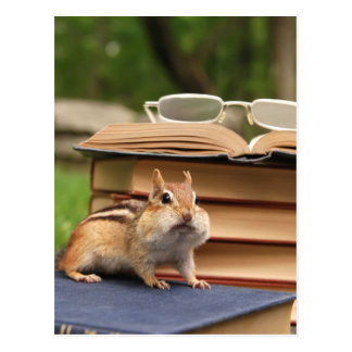 Bookloving Chipmunk Postcard