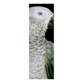 BOOKMARK - African Grey Parrot Pack Of Skinny Business Cards