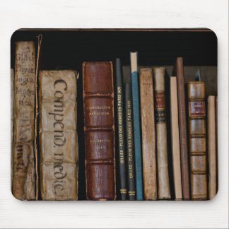 Books on Open Shelf Mouse Pad