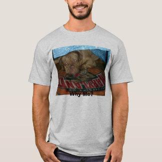 Boomer 006, Why Me? T-Shirt