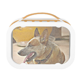 Boomer Drawing Lunch Box