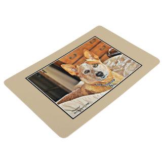 Boomer Floor Mat