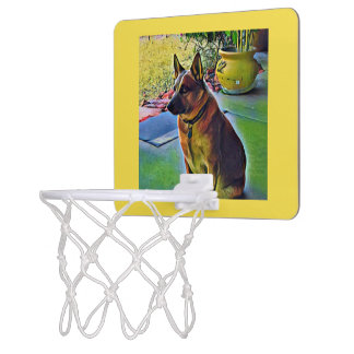 """Boomer"" Red Heeler Mini Basketball Hoop"
