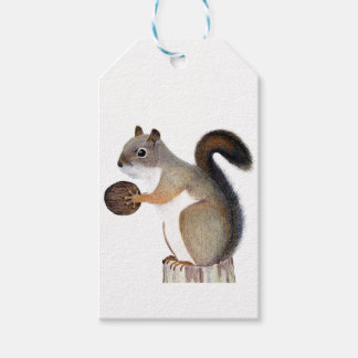 Boomer Squirrel Gift Tags