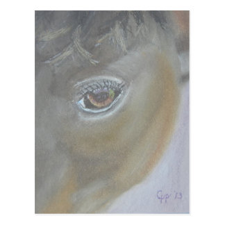 Boost My Ego - Horse Painting Postcard