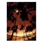 Bora Bora, French Polynesia Sunset shot through Post Cards