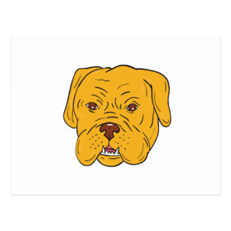Bordeaux Dog Head Cartoon Postcard