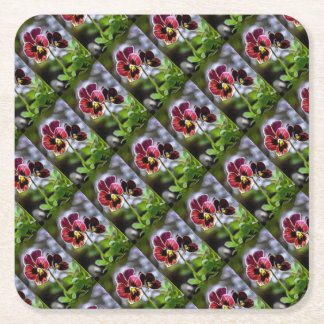 Bordeaux Pansy Flower Duo Square Paper Coaster