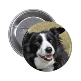Border Collie 6 Cm Round Badge