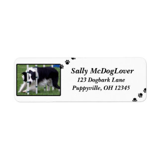 Border Collie Agility Return Address Label