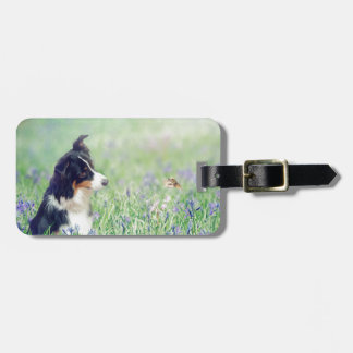 Border Collie and Hummingbird Luggage Tag