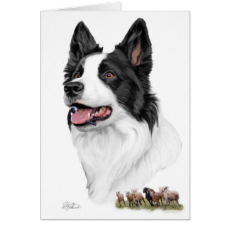 Border Collie and sheep Card