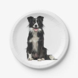 Border Collie Black & White Puppy Dog Paper Plates