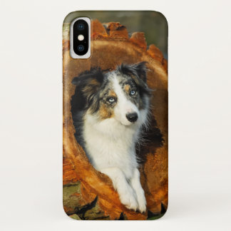 Border Collie Blue Merle Dog Head Photography Pet iPhone X Case