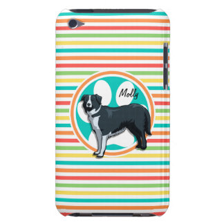 Border Collie; Bright Rainbow Stripes iPod Touch Cases