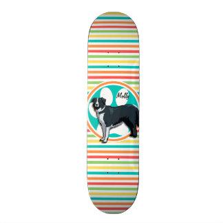 Border Collie; Bright Rainbow Stripes Skate Board