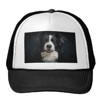 border-collie cap