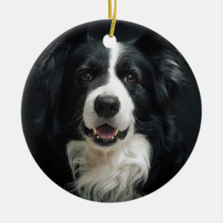 border-collie ceramic ornament