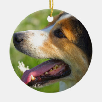 Border Collie Ceramic Ornament