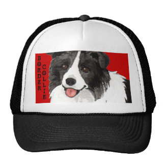 Border Collie Color Block Cap