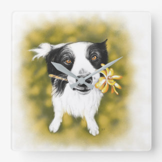 Border collie cutie square wall clock