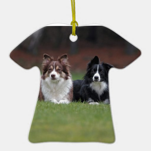 border collie christmas tree ornament