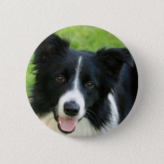 Border Collie Dog Add Text Pet 6 Cm Round Badge