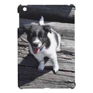 BORDER COLLIE DOG RURAL QUEENSLAND AUSTRALIA iPad MINI COVER