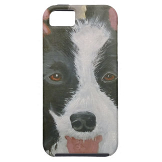 Border Collie gifts Case For The iPhone 5