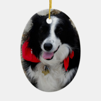 Border Collie Gifts Ceramic Ornament