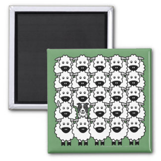 Border Collie in the Sheep Square Magnet