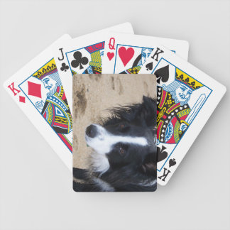 Border Collie items Bicycle Playing Cards
