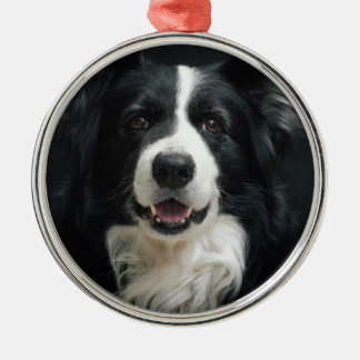 border-collie metal ornament