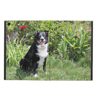 Border Collie - Paddy - Pasten iPad Air Cover