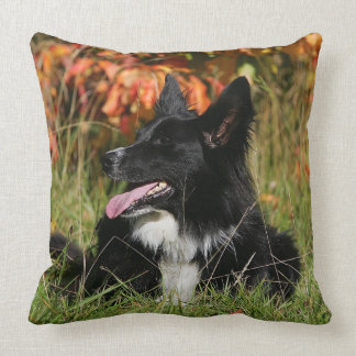 Border Collie Panting Laying Down Throw Pillow