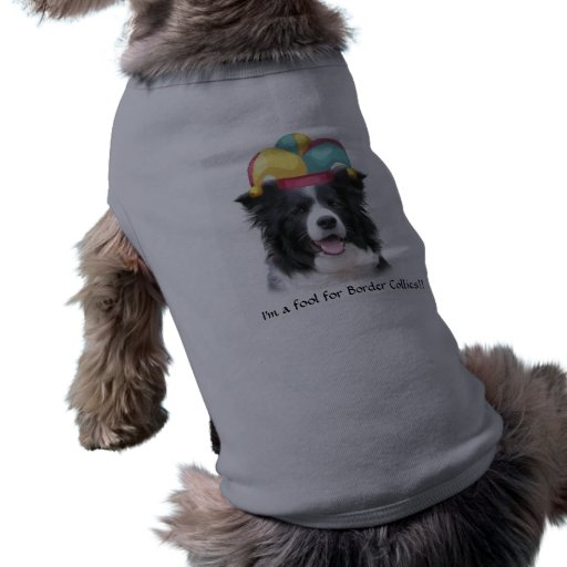 Border Collie Pet Shirt~April Fool's Day~Jester