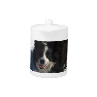 Border Collie photo on products