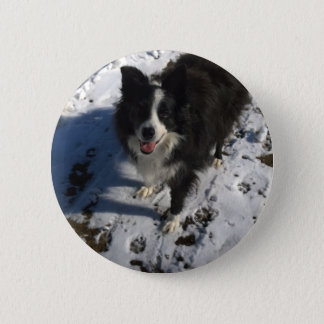 Border Collie photo on products 6 Cm Round Badge