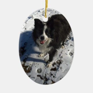Border Collie photo on products Ceramic Oval Decoration