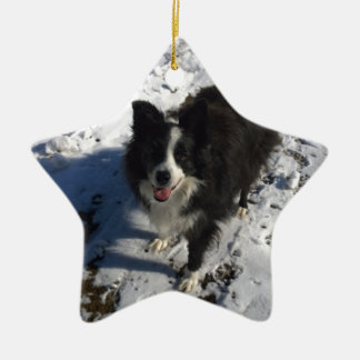 Border Collie photo on products Ceramic Star Decoration