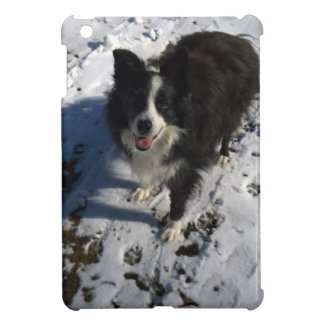 Border Collie photo on products iPad Mini Cases
