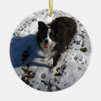 Border Collie photo on products Round Ceramic Decoration