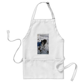 Border Collie photo on products Standard Apron