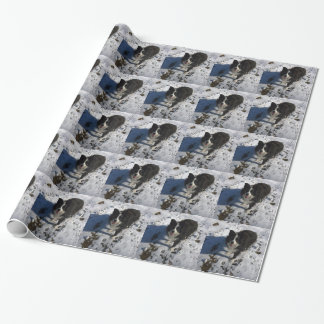 Border Collie photo on products Wrapping Paper
