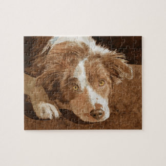 Border Collie Pup Jigsaw Puzzle